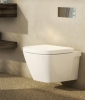 Caroma Cube Invisi Series II Wall Hung Toilet Suite