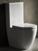 Parisi Ellisse MkII BTW Toilet Suite